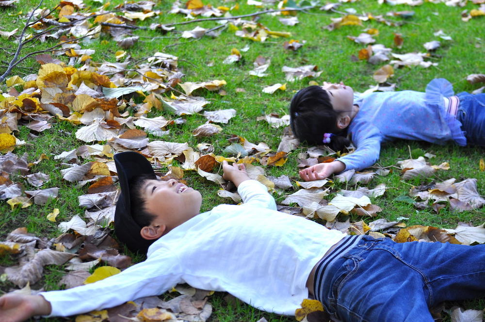 自然と遊ぶ秋<br>「八ヶ岳自然文化園」